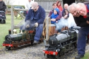 Lambing day at Amnerfield Miniture Railway