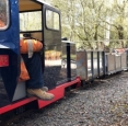 Echills Wood Railway Ballast Train