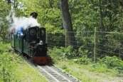 Mizens Railway Visiting Locos Day