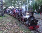 Last public steam at Pettypool